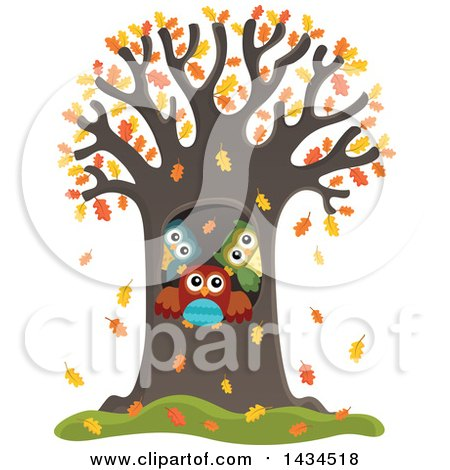 Clipart of a Family of Owls in a Tree Hollow in the Fall - Royalty Free Vector Illustration by visekart