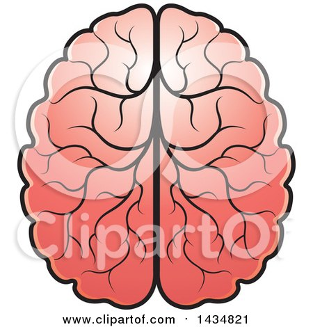 Clipart of a Human Brain - Royalty Free Vector Illustration by Lal Perera