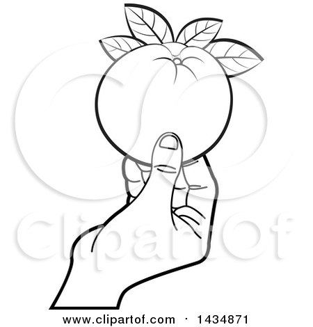 Clipart Of A Black And White Hand Holding A Navel Orange