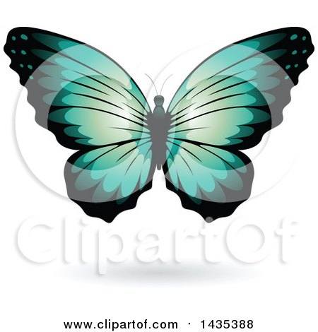 Clipart of a Turquoise Butterfly with a Shadow - Royalty Free Vector Illustration by cidepix