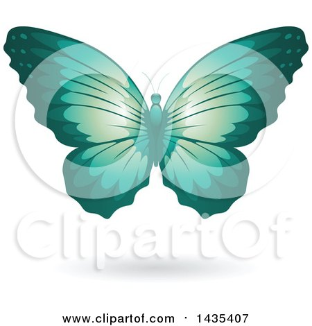 Clipart of a Flying Turquoise Butterfly and Shadow - Royalty Free Vector Illustration by cidepix