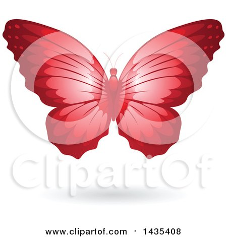 Clipart of a Flying Red Butterfly and Shadow - Royalty Free Vector Illustration by cidepix