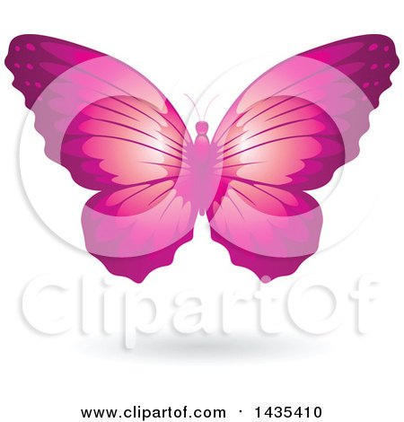 Clipart of a Flying Pink Butterfly and Shadow - Royalty Free Vector Illustration by cidepix