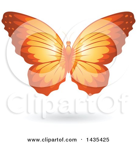 Clipart of a Flying Orange Butterfly and Shadow - Royalty Free Vector Illustration by cidepix