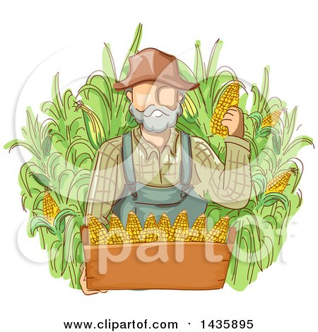 Clipart of a Sketched White Male Farmer in Overalls, Holding Corn over a Box - Royalty Free Vector Illustration by BNP Design Studio