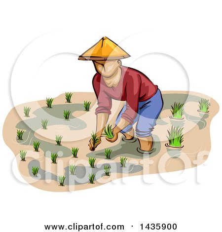 Royalty-Free (RF) Rice Clipart, Illustrations, Vector Graphics #1