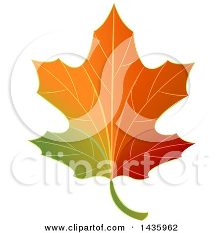 Clipart of a Gradient Autumn Maple Leaf - Royalty Free Vector Illustration by BNP Design Studio