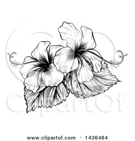 Clipart of a Vintage Black and White Engraved or Woodcut Hibiscus Flower Design - Royalty Free Vector Illustration by AtStockIllustration