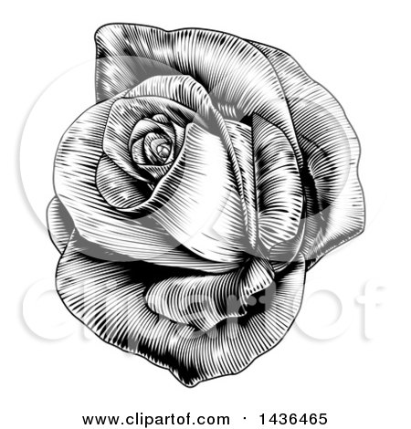 Clipart of a Vintage Black and White Engraved or Woodcut Blooming Rose - Royalty Free Vector Illustration by AtStockIllustration