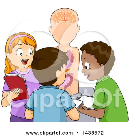 Clipart of a Group of Happy School Children Studying an Anatomical Model - Royalty Free Vector Illustration by BNP Design Studio