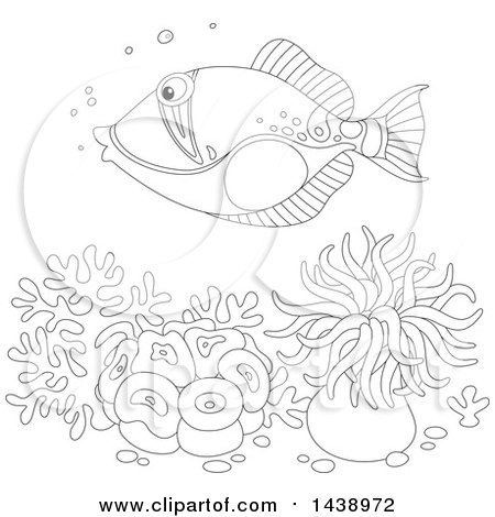Reef Triggerfish coloring page | Free Printable Coloring Pages ... | 470x450