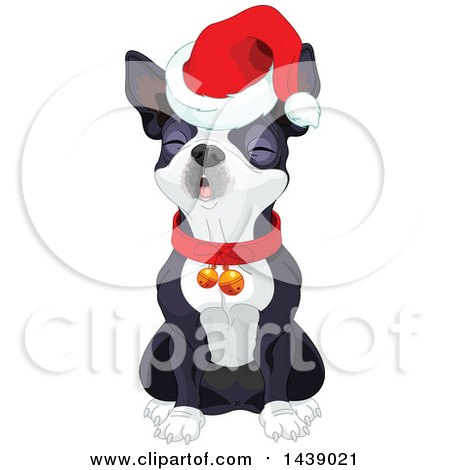 Clipart of a Cute Boston Terrier Dog Wearing a Christmas Santa Hat and Singing - Royalty Free Vector Illustration by Pushkin