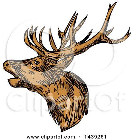 Clipart of a Sketched Red Deer Stag Buck - Royalty Free Vector Illustration by patrimonio