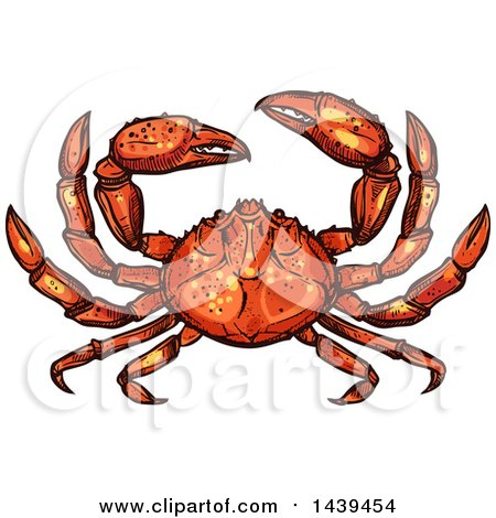 Clipart of a Sketched and Colored Crab - Royalty Free Vector Illustration by Vector Tradition SM