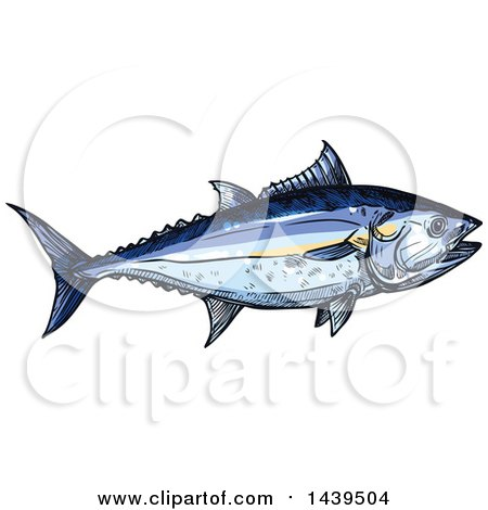 Clipart of a Sketched and Colored Tuna Fish - Royalty Free Vector Illustration by Vector Tradition SM