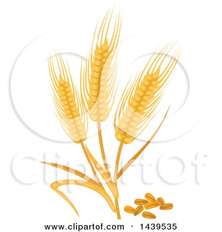 Clipart of Wheat and Stalks - Royalty Free Vector Illustration by Vector Tradition SM
