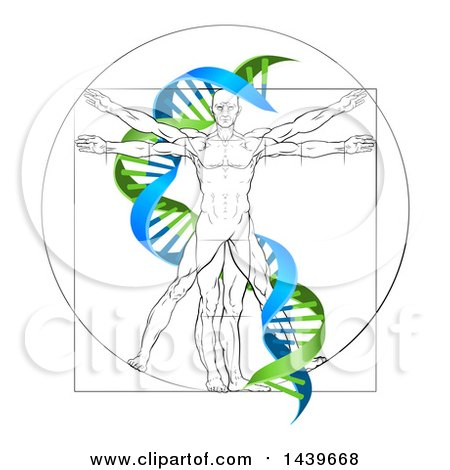 Clipart of a Vitruvian Man with a Green and Blue Double Helix - Royalty Free Vector Illustration by AtStockIllustration