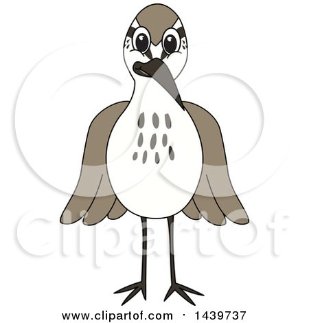 Clipart of a Sandpiper Bird School Mascot Character - Royalty Free Vector Illustration by Toons4Biz