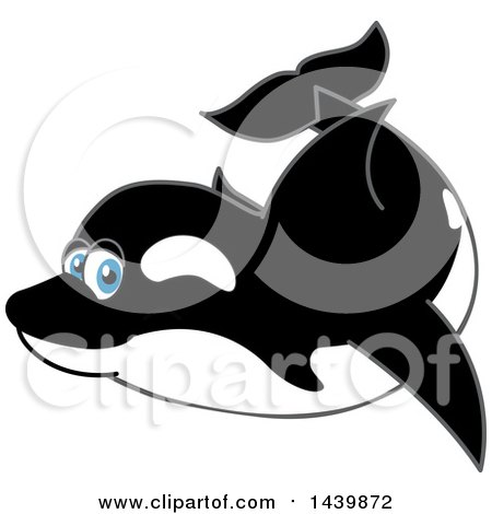 Clipart of a Killer Whale Orca School Mascot Character Swimming - Royalty Free Vector Illustration by Toons4Biz