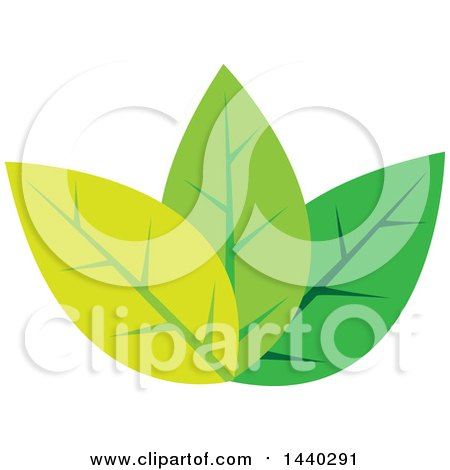 Clipart of a Trio of Green Leaves - Royalty Free Vector Illustration by ColorMagic