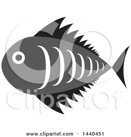 Clipart of a Gray, White and Black Marine Fish - Royalty Free Vector Illustration by ColorMagic