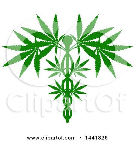 Clipart of a Silhouetted Green Medical Marijuana Design with a Cannabis Plant Growing on a Caduceus - Royalty Free Vector Illustration by AtStockIllustration