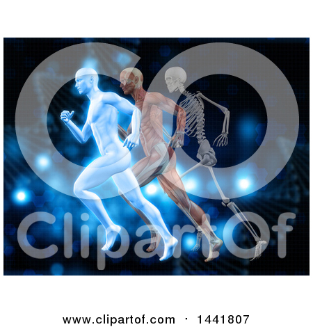 Clipart of 3d Anatomical Men Running with Visible Muscles and Skeleton, over Blue with Dna Strands - Royalty Free Illustration by KJ Pargeter