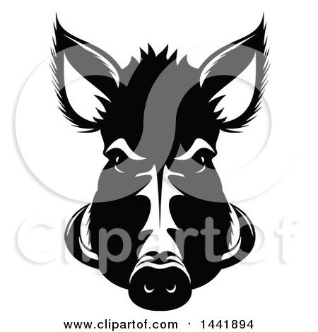 Clipart of a Black and White Razorback Boar Head - Royalty Free Vector Illustration by Vector Tradition SM