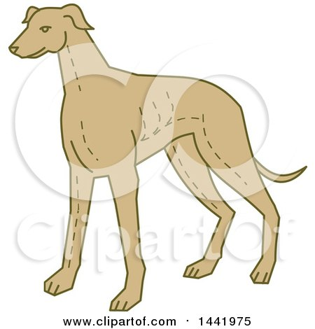 Clipart of a Mono Line Styled Standing Greyhound Dog - Royalty Free Vector Illustration by patrimonio