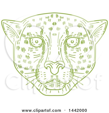 Clipart of a Mono Line Styled Green Cheetah Face - Royalty Free Vector Illustration by patrimonio