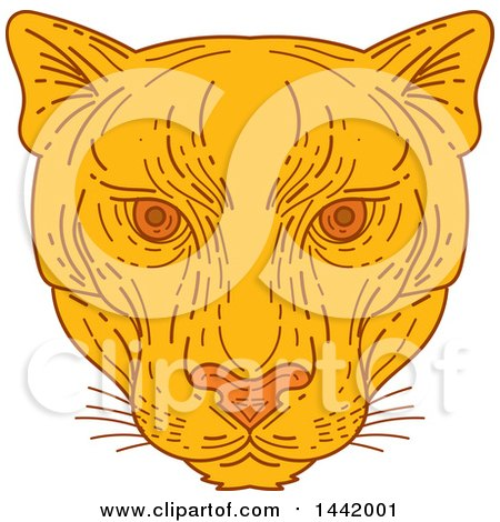 Clipart of a Mono Line Styled Cougar Puma Mountain Lion Face - Royalty Free Vector Illustration by patrimonio