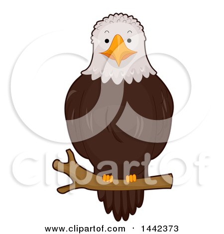 Clipart of a Bald Eagle Perched on a Branch - Royalty Free Vector Illustration by BNP Design Studio