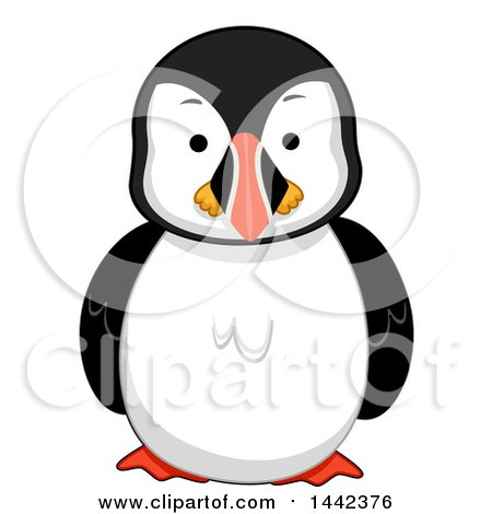 Clipart of a Puffin Bird - Royalty Free Vector Illustration by BNP Design Studio