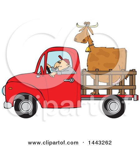 Clipart of a Cartoon White Man Driving a Red Pickup Truck and Hauling a Cow - Royalty Free Vector Illustration by djart