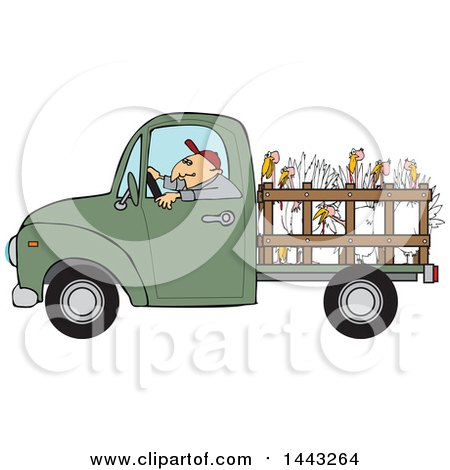 Clipart of a Cartoon White Man Driving a Green Pickup Truck and Hauling Turkeys - Royalty Free Vector Illustration by djart