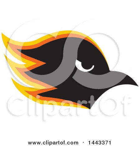 Clipart Of A Yellow Orange Black And White Profiled Hawk Mascot Head Royalty Free Vector Illustration