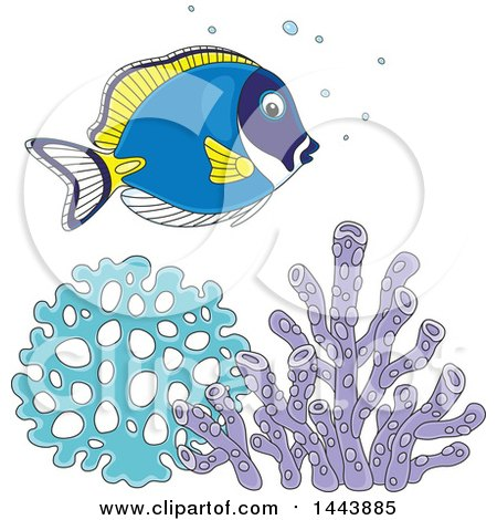 Clipart of a Cartoon Pretty Powder Blue Tang Fish over Corals - Royalty Free Vector Illustration by Alex Bannykh