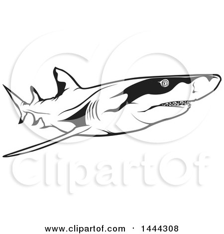 Clipart of a Black and White Swimming Lemon Shark - Royalty Free Vector Illustration by dero