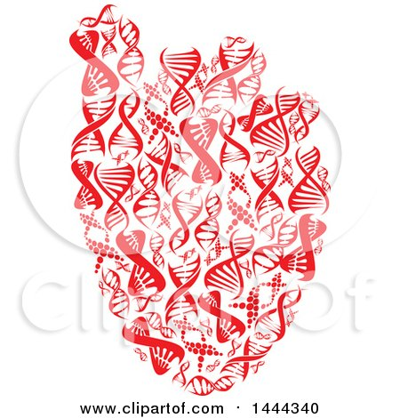 Clipart of a Red Human Heart Made of Dna Strands - Royalty Free Vector Illustration by Vector Tradition SM