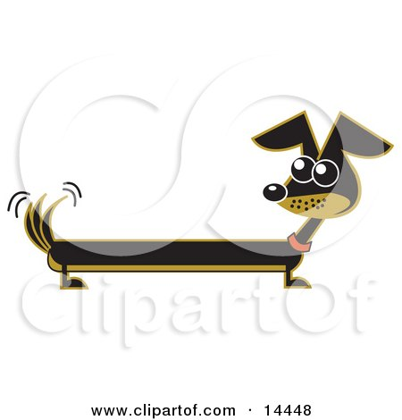 Long Brown and Black Wiener Dog Wagging His Tail  Posters, Art Prints
