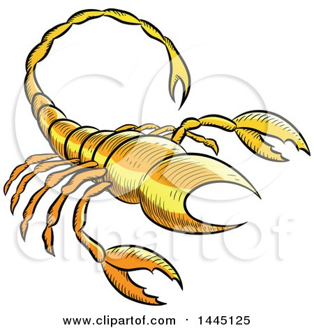 Clipart of a Sketched Yellow Astrology Zodiac Scorpio Scorpion - Royalty Free Vector Illustration by cidepix