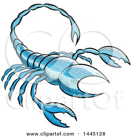Clipart of a Sketched Blue Astrology Zodiac Scorpio Scorpion - Royalty Free Vector Illustration by cidepix