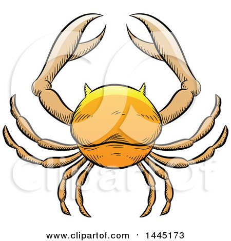 Clipart of a Sketched Golden Yellow Astrology Zodiac Cancer Crab - Royalty Free Vector Illustration by cidepix