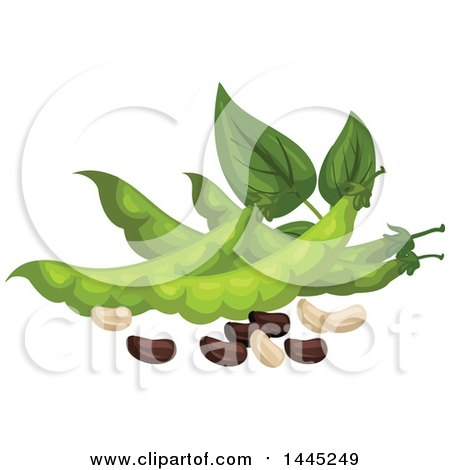 Clipart of a Design of Beans and Pods - Royalty Free Vector Illustration by Vector Tradition SM