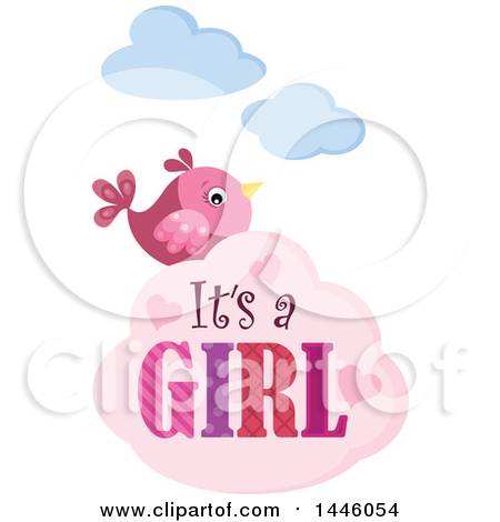 Pink Bird with Gender Reveal Its a Girl Text on a Cloud Posters, Art Prints