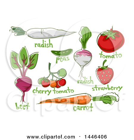 Clipart of Sketched Fruits and Vegetables with Text - Royalty Free Vector Illustration by BNP Design Studio