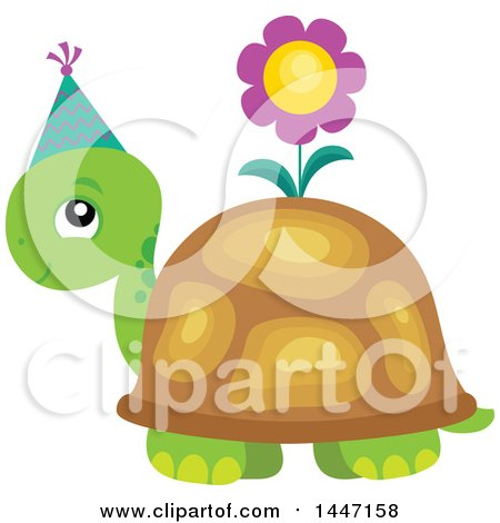 Cute Party Tortoise Turtle Wearing A Party Hat With A Flower On