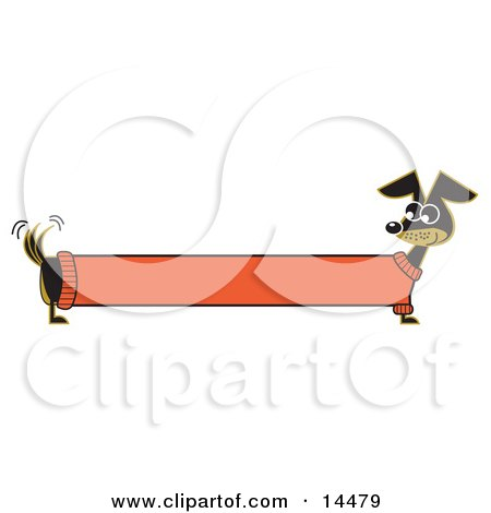 Long Stretched Dachshund Dog In An Orange Sweater, Appearing To Be A Banner  Posters, Art Prints