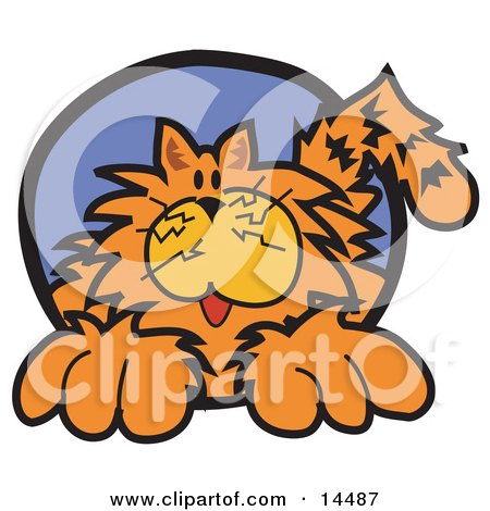 Chubby Happy Orange Cat Clipart Illustration by Andy Nortnik