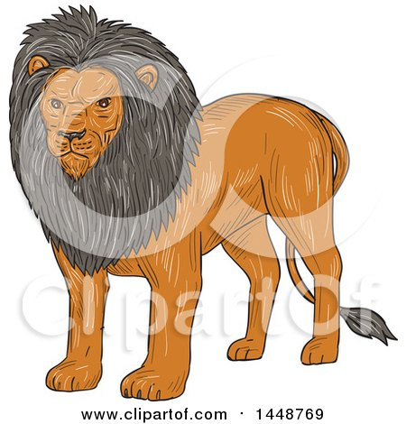 Clipart of a Sketched Drawing Styled Standing Lion - Royalty Free Vector Illustration by patrimonio